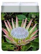 King Protea Duvet Cover