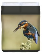 Kingfisher Itch Duvet Cover