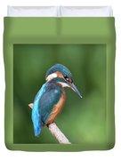 Kingfisher Watching Below Duvet Cover