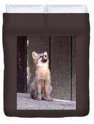 Kit Fox11 Duvet Cover
