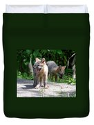 Kit Fox12 Duvet Cover