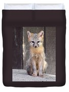 Kit Fox15 Duvet Cover