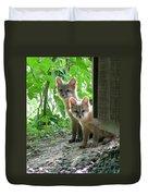Kit Fox16 Duvet Cover