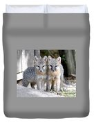 Kit Fox6 Duvet Cover