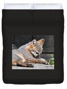 Kit Fox8 Duvet Cover