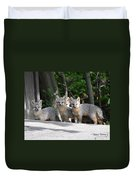 Kit Fox9 Duvet Cover