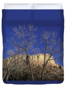 Kitchen Mesa And Bare Cottonwood Trees Duvet Cover