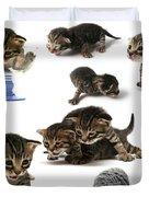 Kitten Collage Duvet Cover