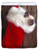 Kitten In Stocking Duvet Cover