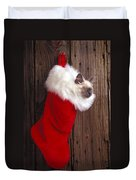 Kitten In Stocking Duvet Cover by Garry Gay