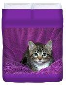 Kitten, Purr-fect In Purple Duvet Cover