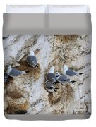 Kittiwakes Tend Their Chicks At Rspb Bempton Cliffs Duvet Cover