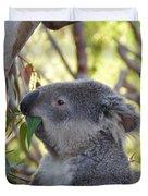 Koala Time Duvet Cover
