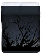 Kodachrome Basin Night Sky 2963 Duvet Cover