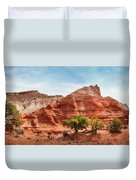 Kodachrome Park Colorful Desert Beauty In Spring. Duvet Cover