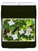 Kousa Dogwood In Bloom Duvet Cover