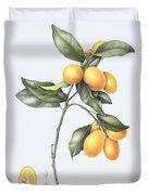 Kumquat Duvet Cover by Margaret Ann Eden
