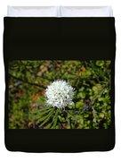 Labrador Tea Duvet Cover