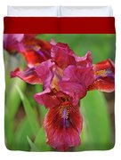 Lady In Red Iris Duvet Cover