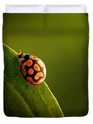 Ladybug  On Green Leaf Duvet Cover