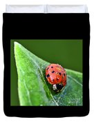 Ladybug With Dew Drops Duvet Cover