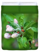 Ladybugs On Apple Blossoms Duvet Cover