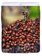 Ladybugs On Branch Duvet Cover