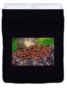 Ladybugs On Branch Duvet Cover by Garry Gay