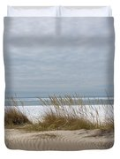Lake Erie Sand Dunes Dry Grass And Ice Duvet Cover