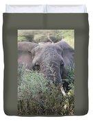 Lake Manyara Elephant Duvet Cover