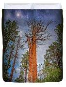 Lake Tahoe Trees On 89  Duvet Cover