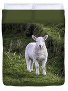 Lamb On The Isle Of Skye Duvet Cover