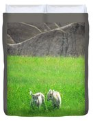 Lambs In A Sea Of Green Duvet Cover
