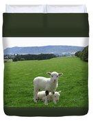 Lambs In Pasture Duvet Cover