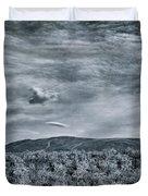 Landshapes 34 Duvet Cover by Priska Wettstein