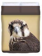 Lanner Falcon Duvet Cover