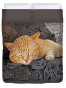 Lanzarote Ginger Duvet Cover