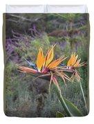 Large Bird Of Paradise Flower In Full Bloom  Duvet Cover
