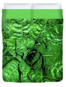 Large Green Display Of Concentric Leaves Duvet Cover