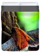 Large Moth Macro Duvet Cover