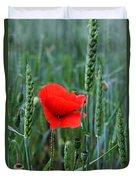 Last Poppy Duvet Cover