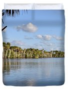 Late Afternoon Sunlight II Duvet Cover