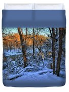 Late Afternoon Winter Light Duvet Cover