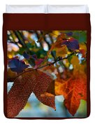 Late Autumn Colors Duvet Cover by Stephen Anderson