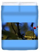 Late Fall Color 6493 Duvet Cover