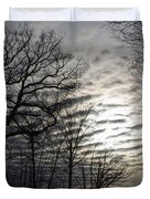 Late Winter Afternoon Duvet Cover