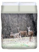 Late Winter Whitetails Duvet Cover