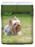 Laughing Yorkshire Terrier Duvet Cover