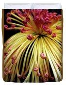 Lava Chrysanthemum Duvet Cover