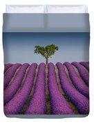 Lavander Field Luberon Duvet Cover